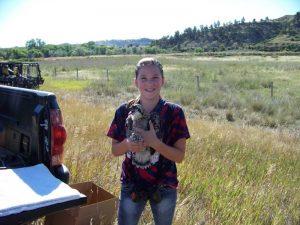 nicole-and-osprey-nestling-resized